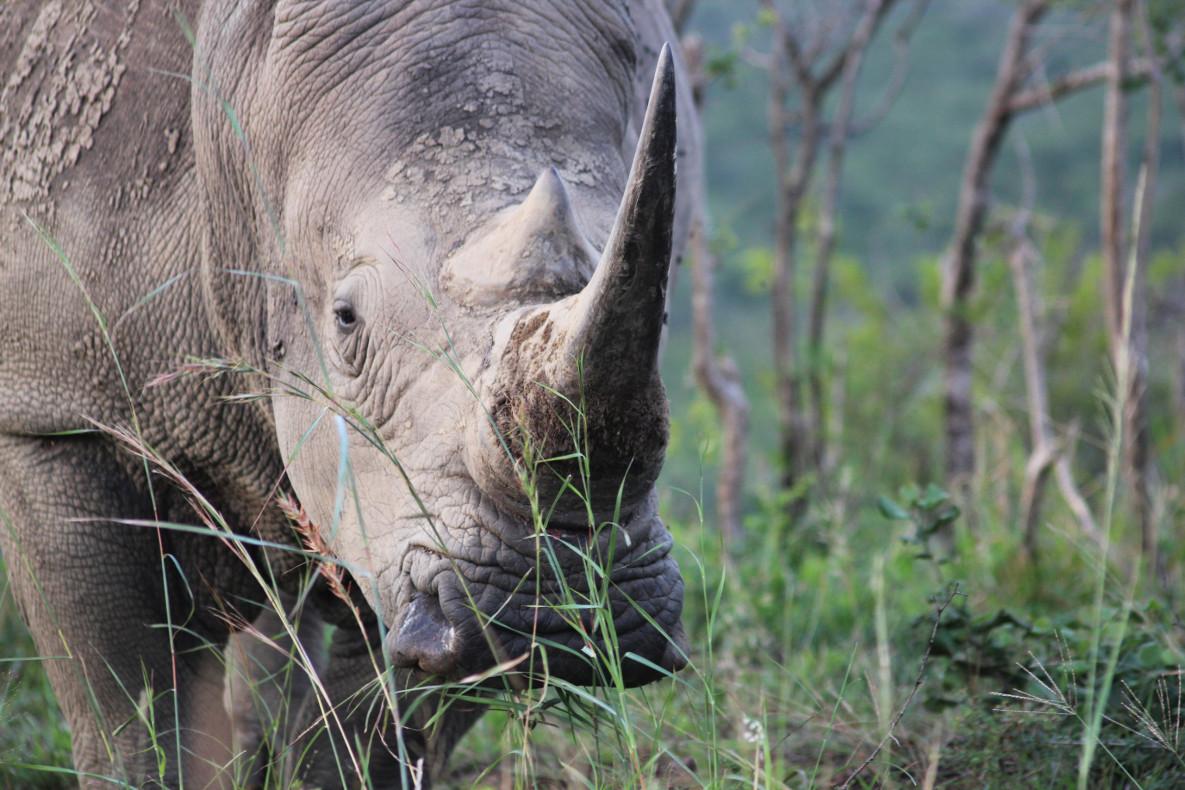 Blog Mijke Zuid-Afrika