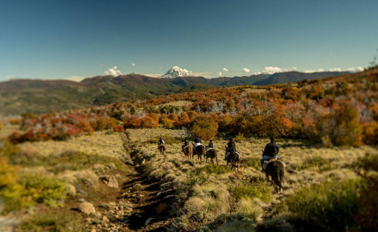 Noord-Patagonië te paard
