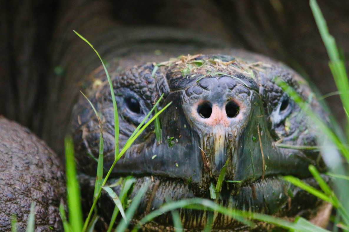 Blog Ecuador Galapagos Jozef 2018