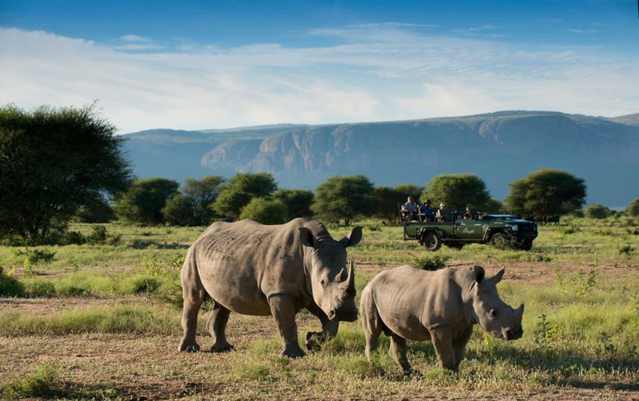 Blog Petra Zuid-Afrika 2018
