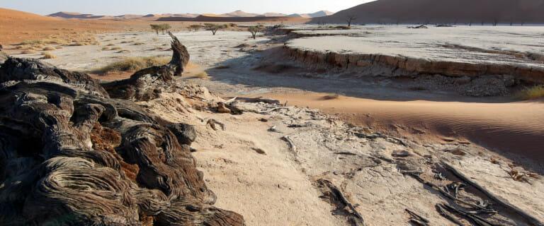Namibië reizen