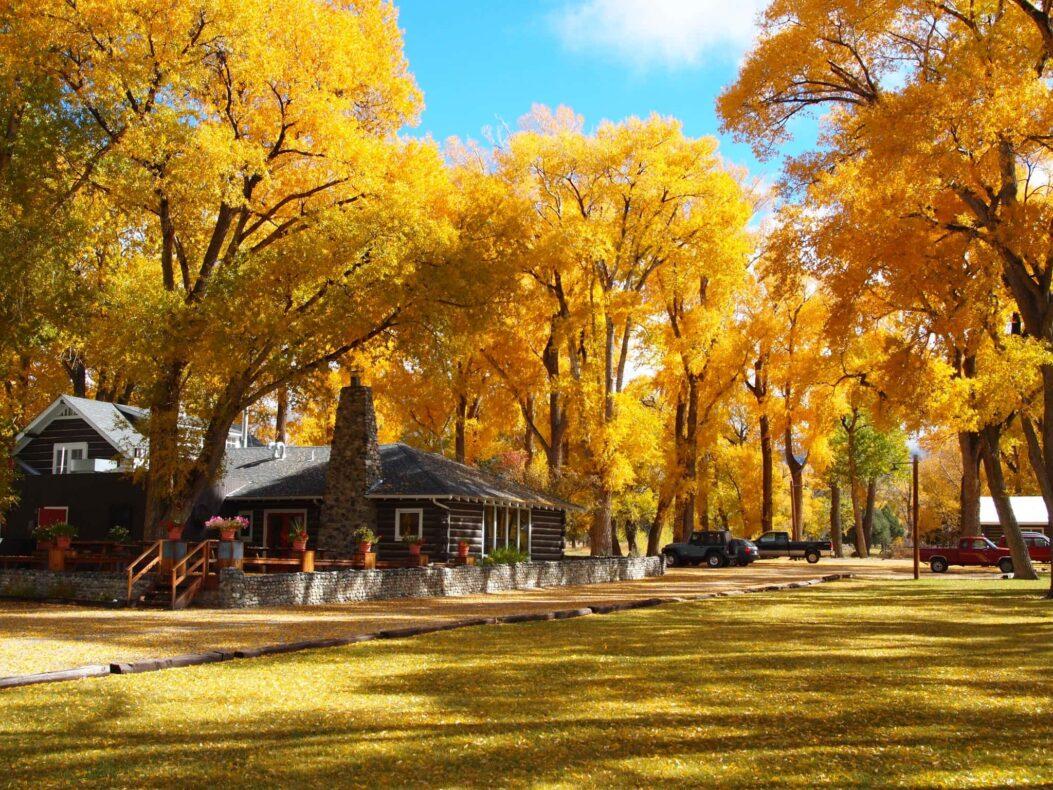 Zapata Ranch, Colorado, USA